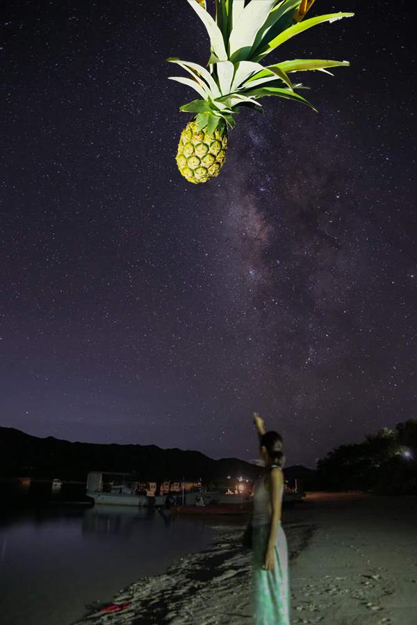 川平湾とパイナップル